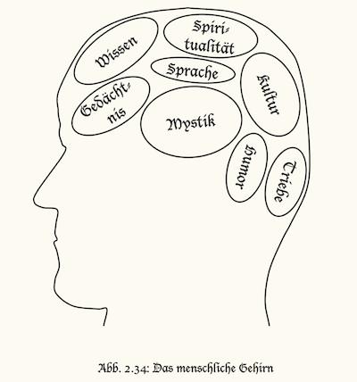 Illustration Bereiche des menschlichen Gehirns