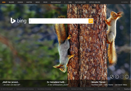 Screenshot Website Bing