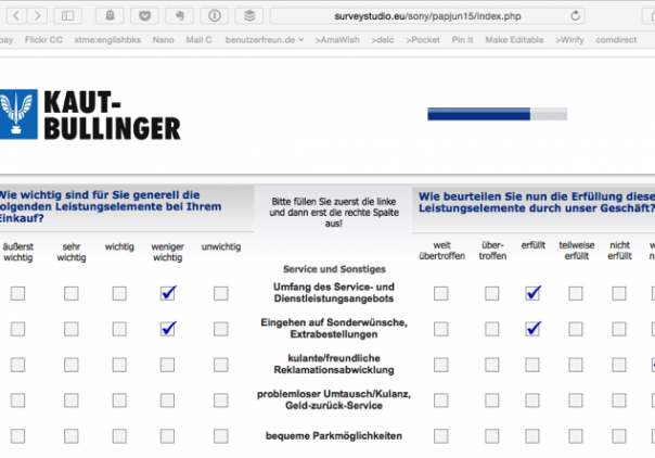 Screenshot Fragebogen Web