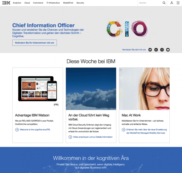 Screenshot Website IBM