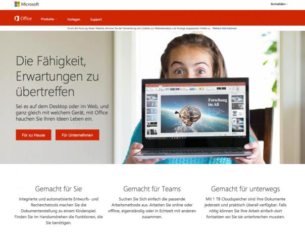 Screenshot Website MS Office