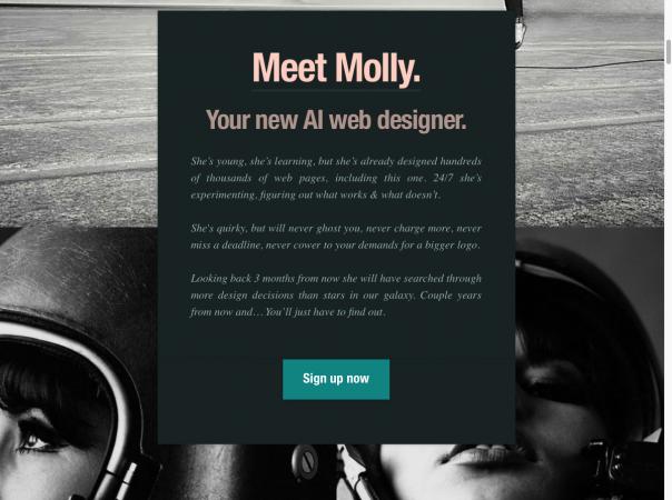 Screenshot Website The Grid