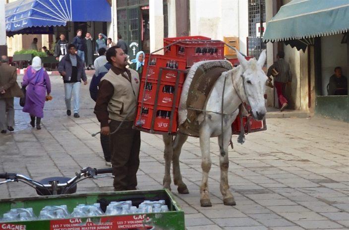 Foto Coca Cola auf dem Esel
